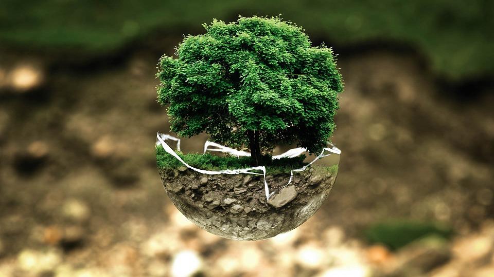 Dossier thématique – La philosophie appliquée pour un monde plus durable