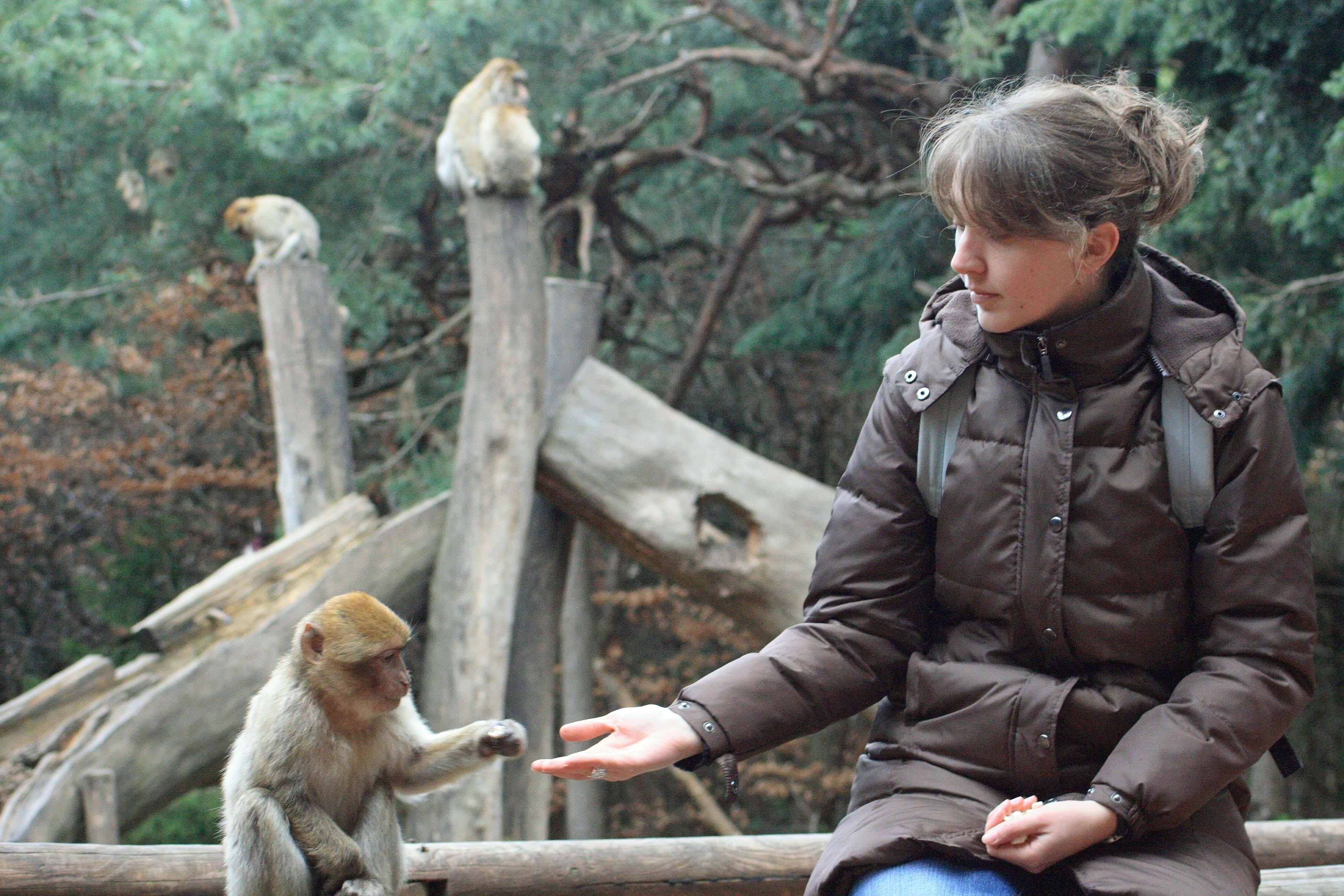 Ethique, droit et éthologie au service de la cause animale – Interview de Marie Pelé