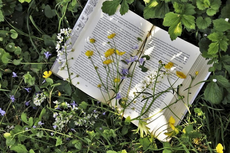 « Si tu as un jardin dans ta bibliothèque, rien ne nous manquera. » – Cicéron
