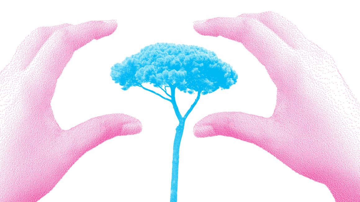 Tous responsables face à la fin de la nature ? Quand les sciences sociales s'engagent