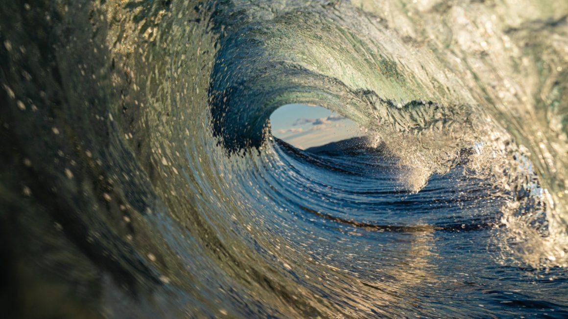 D'un tsunami virtuel à une panique bien réelle : une nécessaire reprise de contact avec le monde